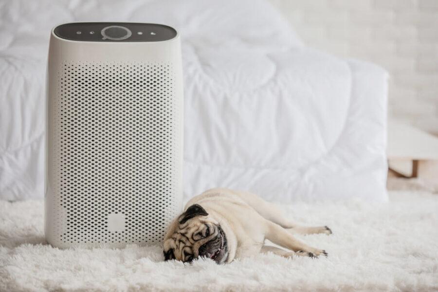Najčešći razlozi za kupovinu prečišćivača vazduha