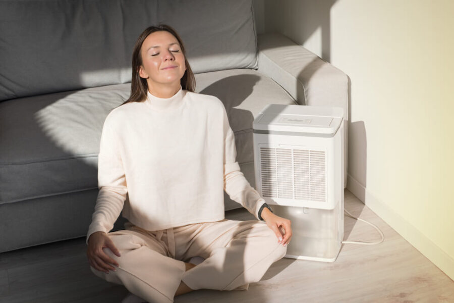 Čemu služi jonizator vazduha?